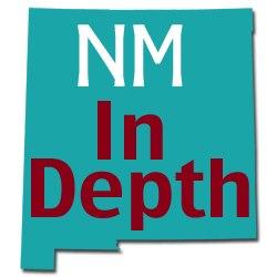 NMID logo