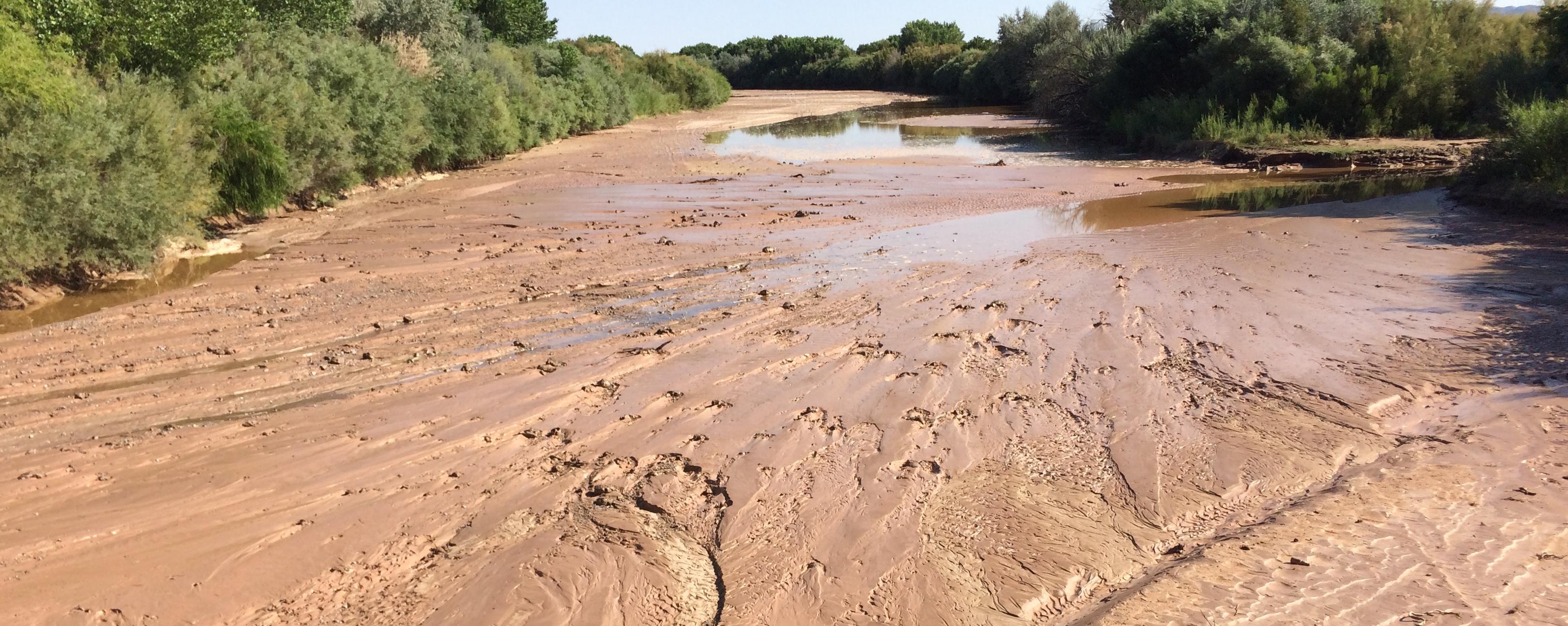 The Middle Rio Grande was dry near San Antonio in July.